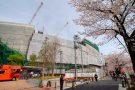 首都高速道路 大橋ジャンクション 目黒川さくらフェスタ2009 建設現場見学